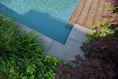 heldere zwemvijver Florijk