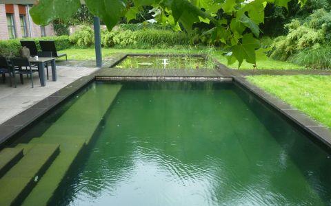 project zwemvijver