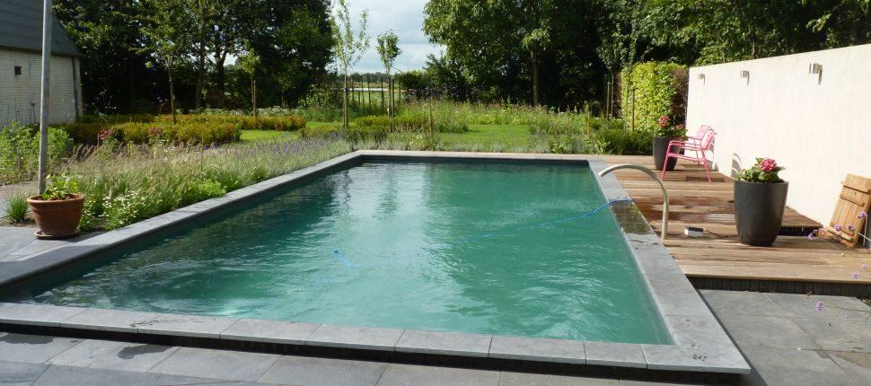 natuurlijk zwembad Boxmeer4