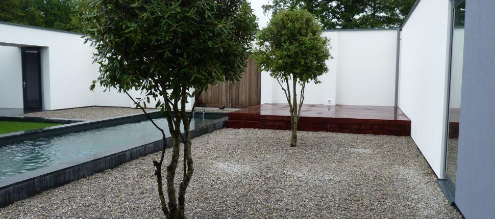natuurlijk zwembad Eindhoven in tuin