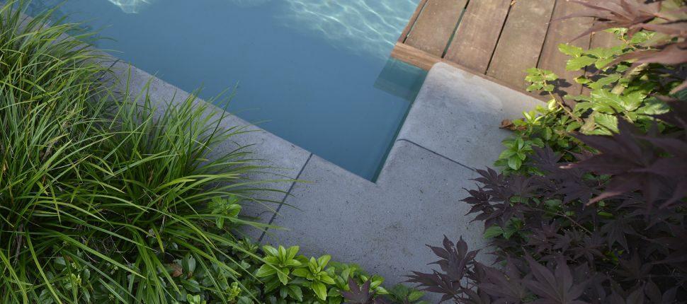 natuurlijk zwembad Nijmegen vlonder