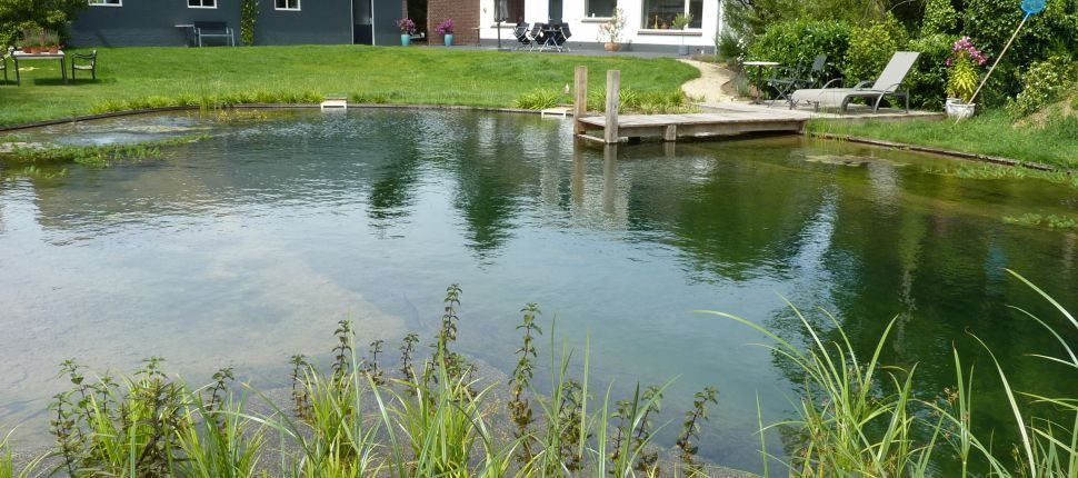 zwemvijver Cuijk5