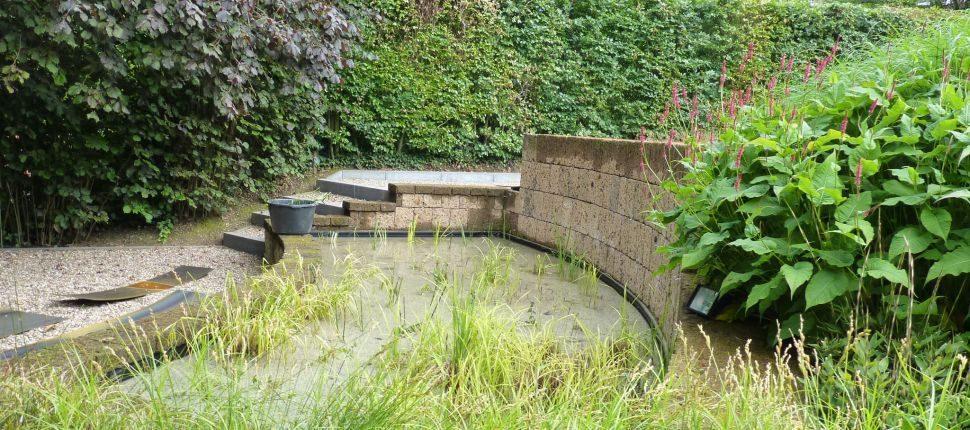 natuurlijke zwemvijver Maastricht